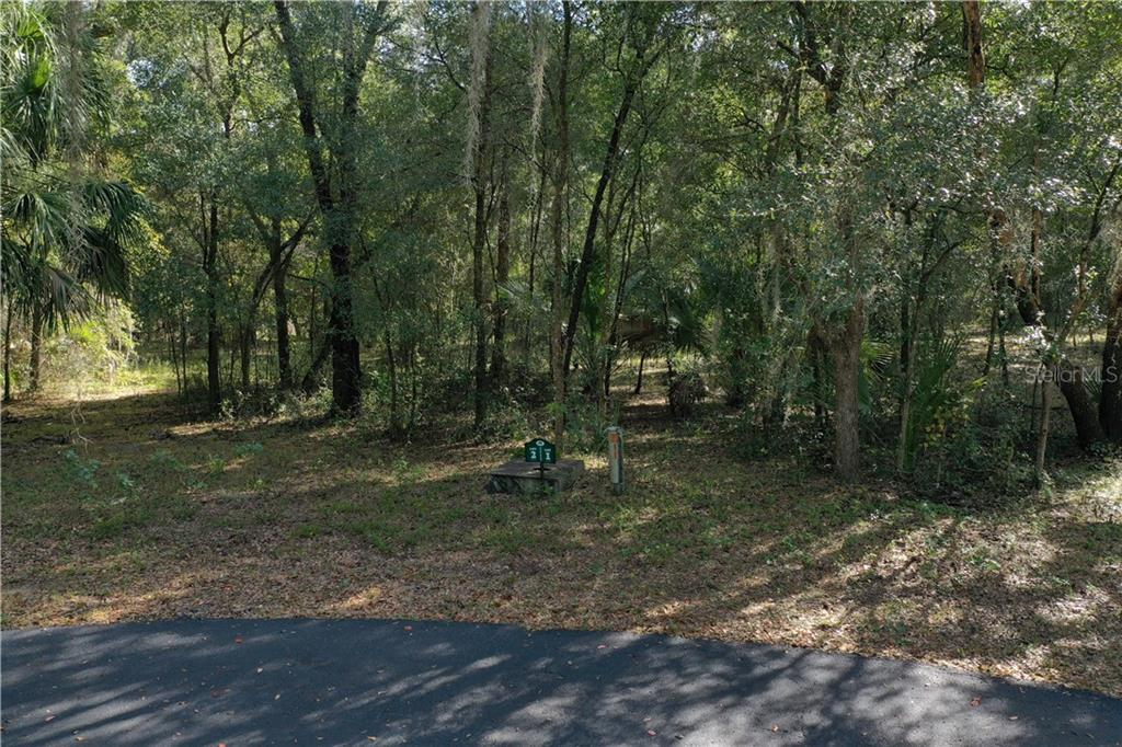 26635 159TH LANE, UMATILLA, FL 32784, ,Land,For sale,159TH,G5023507
